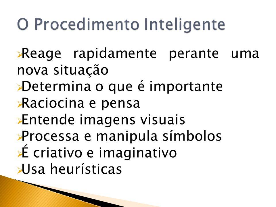 Reage rapidamente perante uma nova situação Determina o que é importante Raciocina e pensa Entende imagens visuais Processa e manipula símbolos É cria