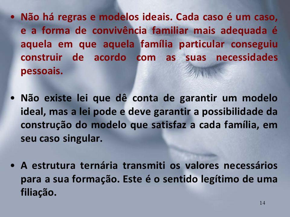 Não há regras e modelos ideais. Cada caso é um caso, e a forma de convivência familiar mais adequada é aquela em que aquela família particular consegu