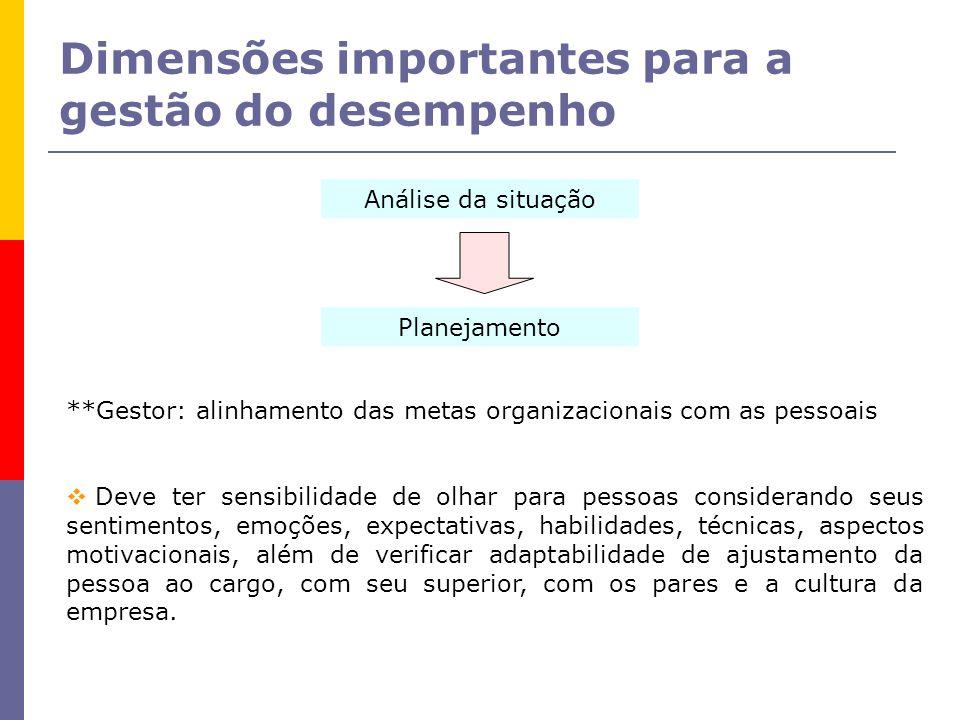 Dimensões importantes para a gestão do desempenho Análise da situação Planejamento **Gestor: alinhamento das metas organizacionais com as pessoais Dev