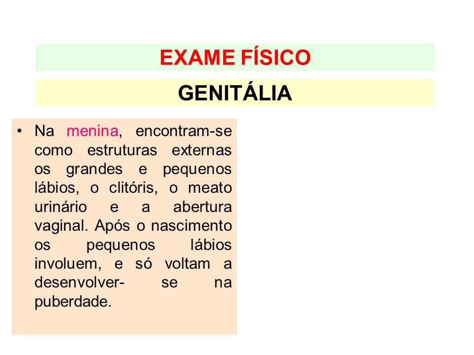 GENITÁLIA EXAME FÍSICO Na menina, encontram-se como estruturas externas os grandes e pequenos lábios, o clitóris, o meato urinário e a abertura vagina