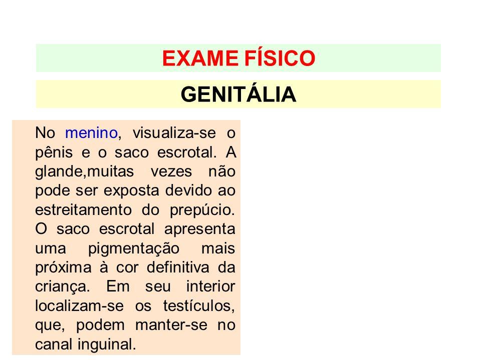 GENITÁLIA EXAME FÍSICO No menino, visualiza-se o pênis e o saco escrotal. A glande,muitas vezes não pode ser exposta devido ao estreitamento do prepúc