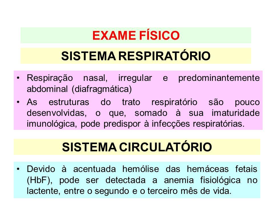 Devido à acentuada hemólise das hemáceas fetais (HbF), pode ser detectada a anemia fisiológica no lactente, entre o segundo e o terceiro mês de vida.