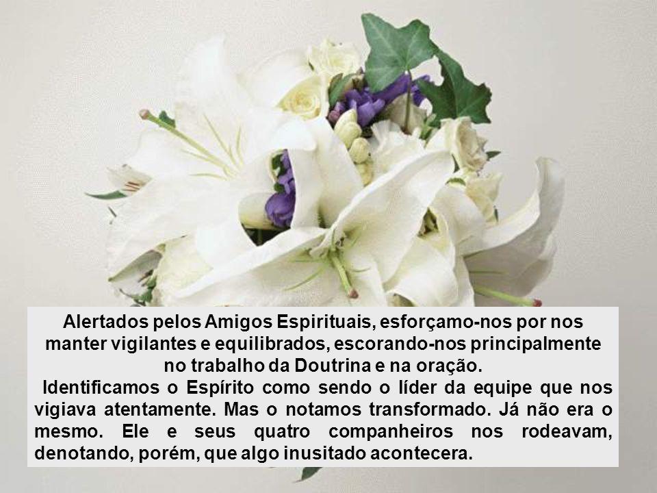 Rio de Janeiro, Julho de 2010 Desejo-lhes paz!