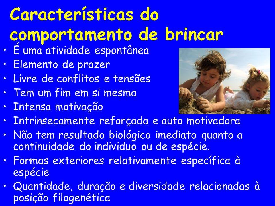 Visão Contemporânea do Brincar O brincar é uma necessidade natural da criança básica em toda a infância, sendo um fenômeno natural de aprendizagem.