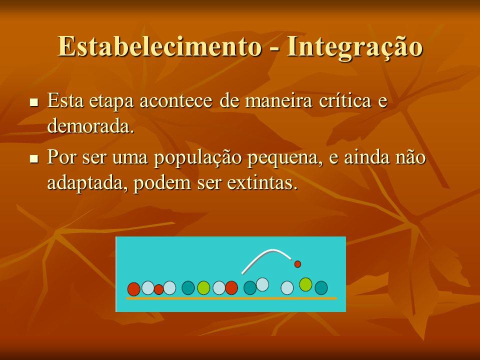 Estabelecimento - Integração Esta etapa acontece de maneira crítica e demorada. Esta etapa acontece de maneira crítica e demorada. Por ser uma populaç
