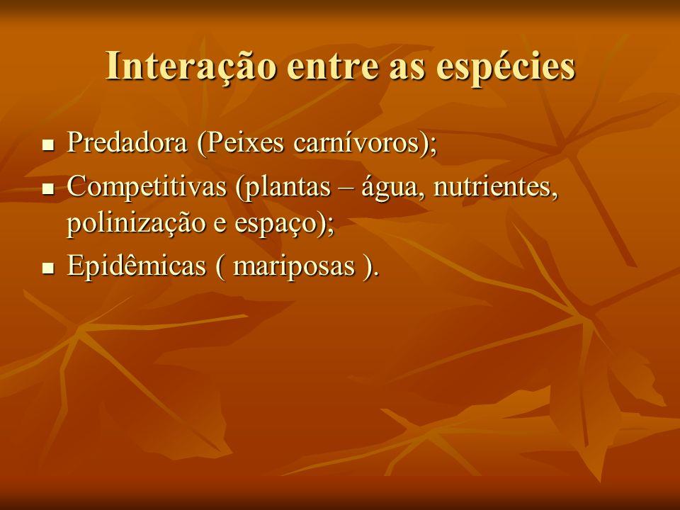 Interação entre as espécies Predadora (Peixes carnívoros); Predadora (Peixes carnívoros); Competitivas (plantas – água, nutrientes, polinização e espa