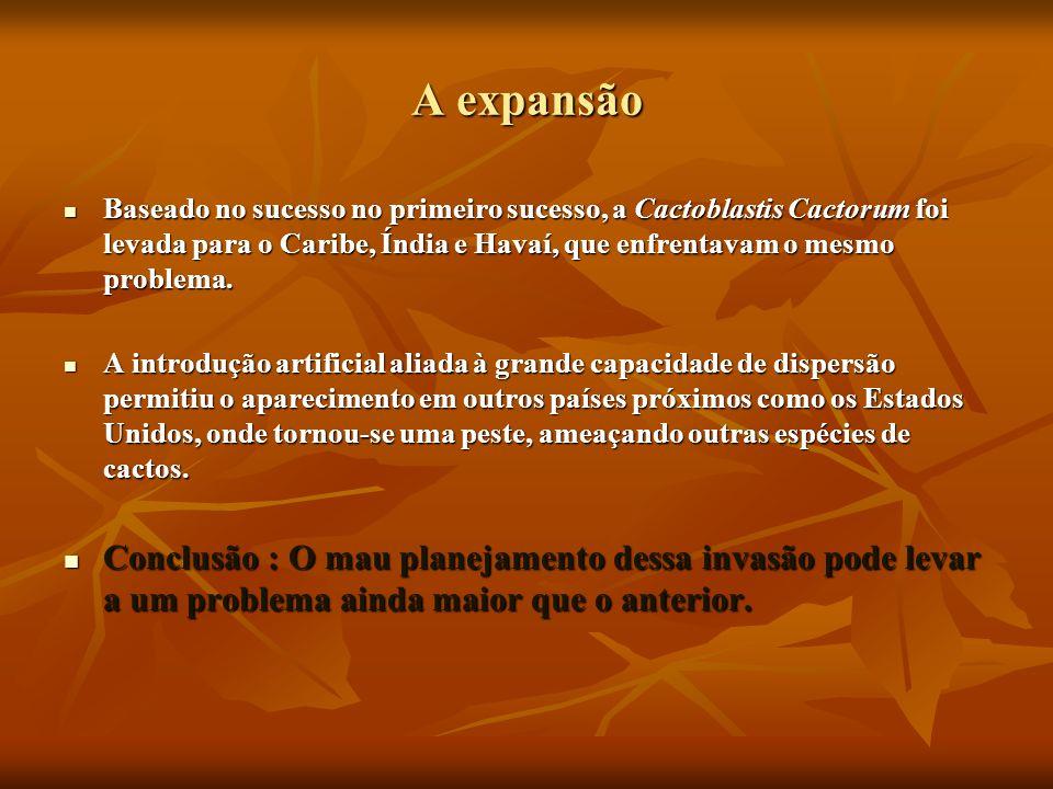 A expansão Baseado no sucesso no primeiro sucesso, a Cactoblastis Cactorum foi levada para o Caribe, Índia e Havaí, que enfrentavam o mesmo problema.