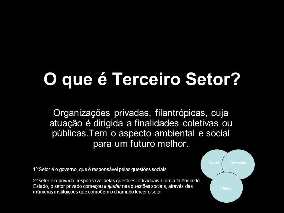 O que é Terceiro Setor? Organizações privadas, filantrópicas, cuja atuação é dirigida a finalidades coletivas ou públicas.Tem o aspecto ambiental e so