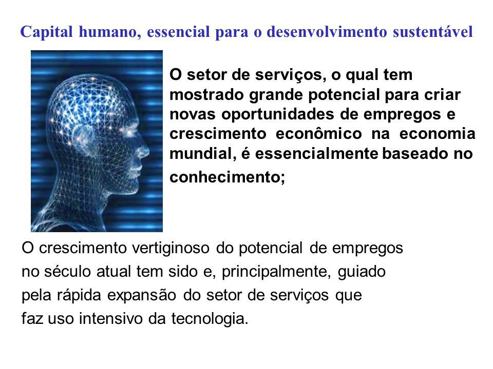 Capital humano, essencial para o desenvolvimento sustentável O setor de serviços, o qual tem mostrado grande potencial para criar novas oportunidades