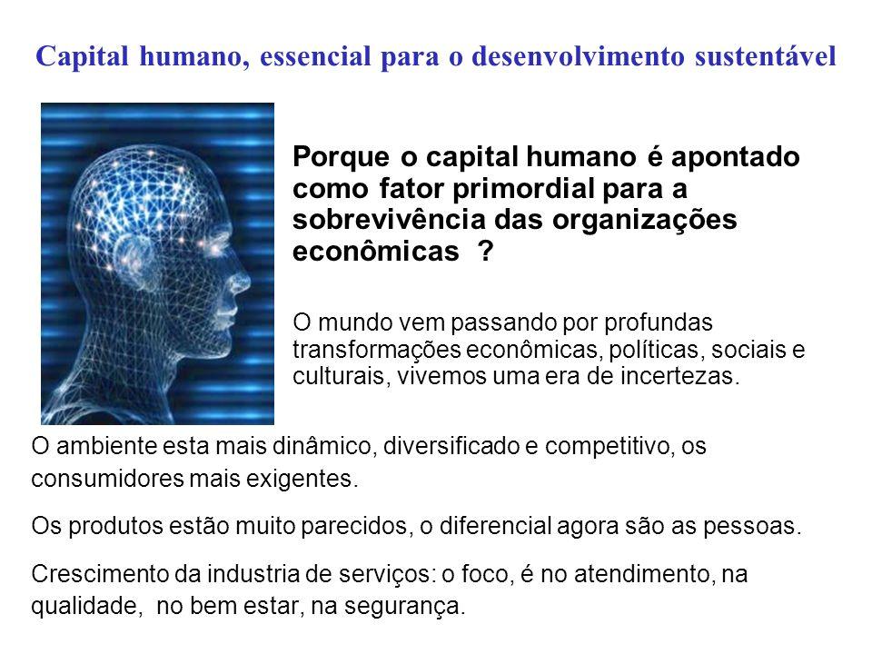 Capital humano, essencial para o desenvolvimento sustentável Porque o capital humano é apontado como fator primordial para a sobrevivência das organiz