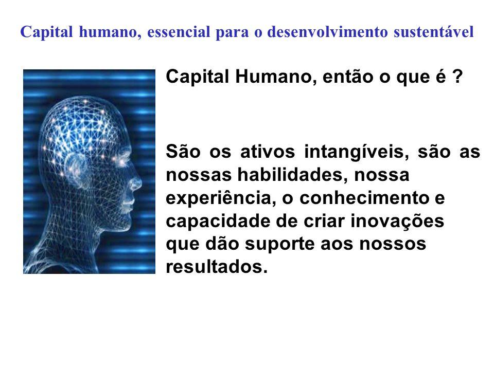 Capital humano, essencial para o desenvolvimento sustentável Capital Humano, então o que é ? São os ativos intangíveis, são as nossas habilidades, nos