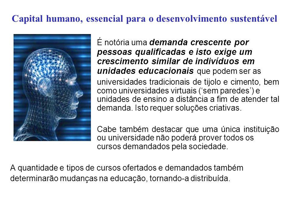 Capital humano, essencial para o desenvolvimento sustentável Quão importante é atender a demanda de formação de capital humano.