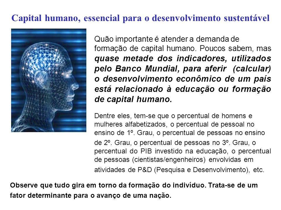 Capital humano, essencial para o desenvolvimento sustentável Quão importante é atender a demanda de formação de capital humano. Poucos sabem, mas quas