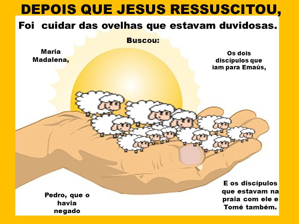 E os discípulos que estavam na praia com ele e Tomé também. DEPOIS QUE JESUS RESSUSCITOU, Foi cuidar das ovelhas que estavam duvidosas. Maria Madalena
