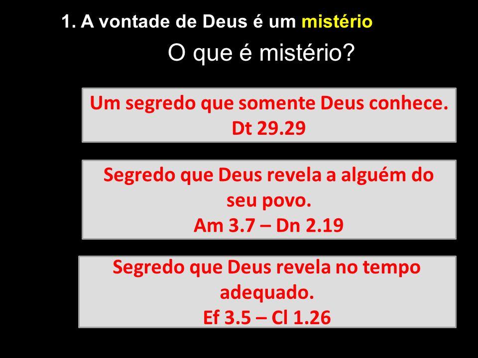 1. A vontade de Deus é um mistério Um segredo que somente Deus conhece. Dt 29.29 Segredo que Deus revela a alguém do seu povo. Am 3.7 – Dn 2.19 Segred
