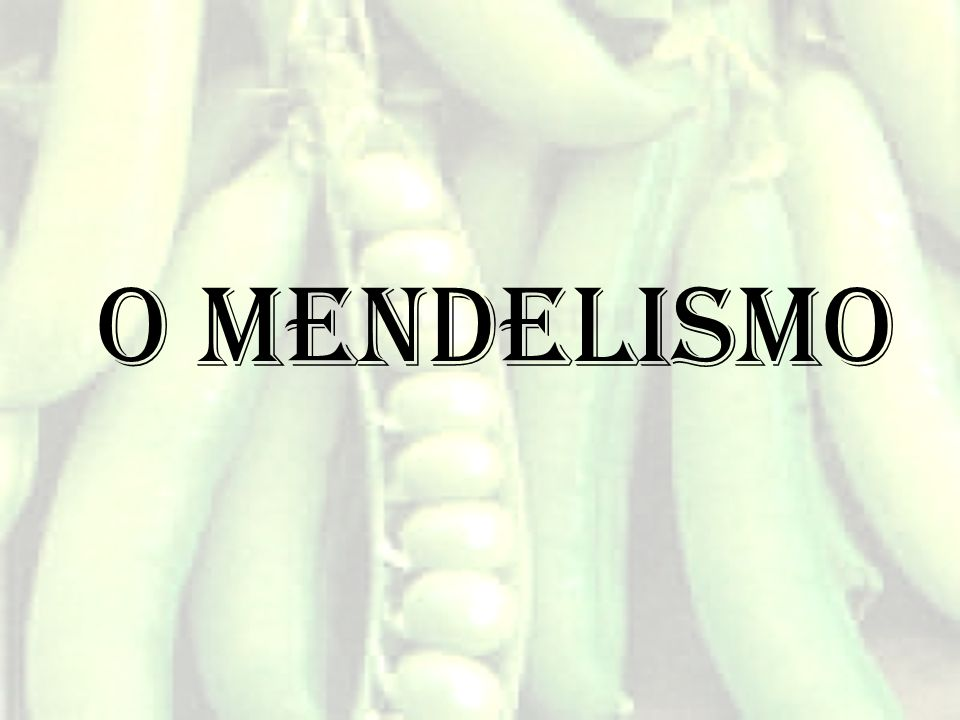 O mendelismo