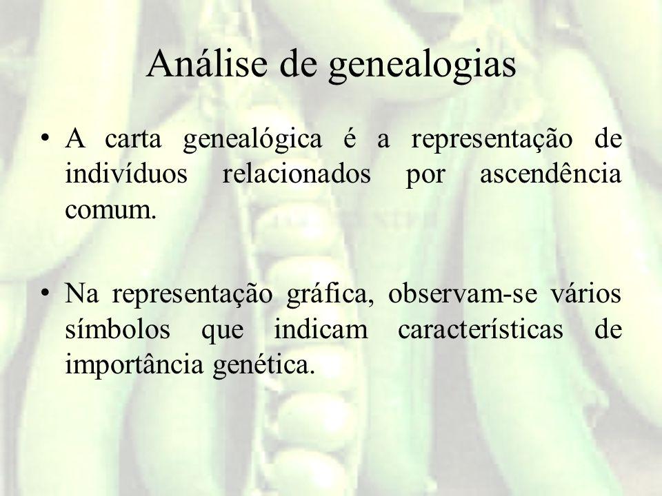 Análise de genealogias A carta genealógica é a representação de indivíduos relacionados por ascendência comum. Na representação gráfica, observam-se v