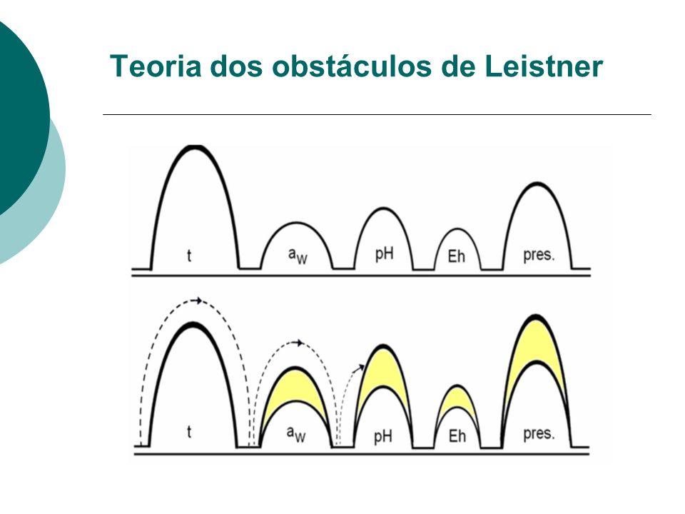 Teoria dos obstáculos de Leistner