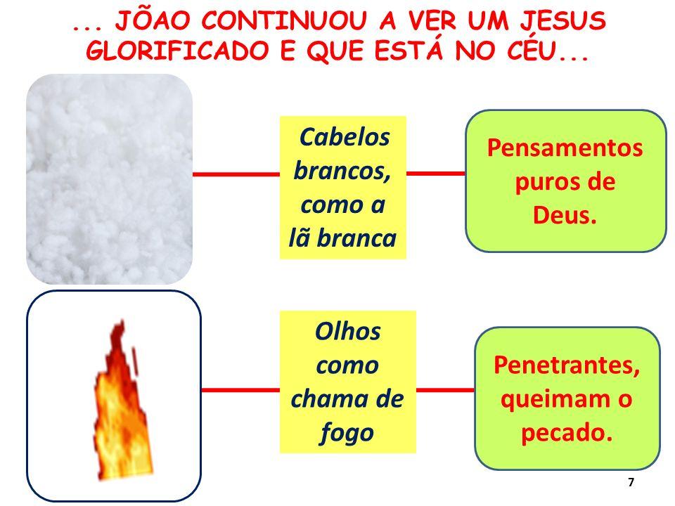 Olhos como chama de fogo Cabelos brancos, como a lã branca Pensamentos puros de Deus.... JÕAO CONTINUOU A VER UM JESUS GLORIFICADO E QUE ESTÁ NO CÉU..