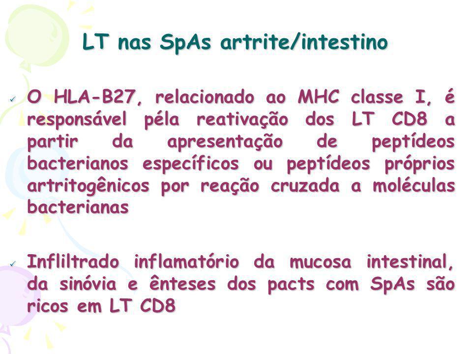 LT nas SpAs artrite/intestino O HLA-B27, relacionado ao MHC classe I, é responsável péla reativação dos LT CD8 a partir da apresentação de peptídeos bacterianos específicos ou peptídeos próprios artritogênicos por reação cruzada a moléculas bacterianas O HLA-B27, relacionado ao MHC classe I, é responsável péla reativação dos LT CD8 a partir da apresentação de peptídeos bacterianos específicos ou peptídeos próprios artritogênicos por reação cruzada a moléculas bacterianas Infliltrado inflamatório da mucosa intestinal, da sinóvia e ênteses dos pacts com SpAs são ricos em LT CD8 Infliltrado inflamatório da mucosa intestinal, da sinóvia e ênteses dos pacts com SpAs são ricos em LT CD8