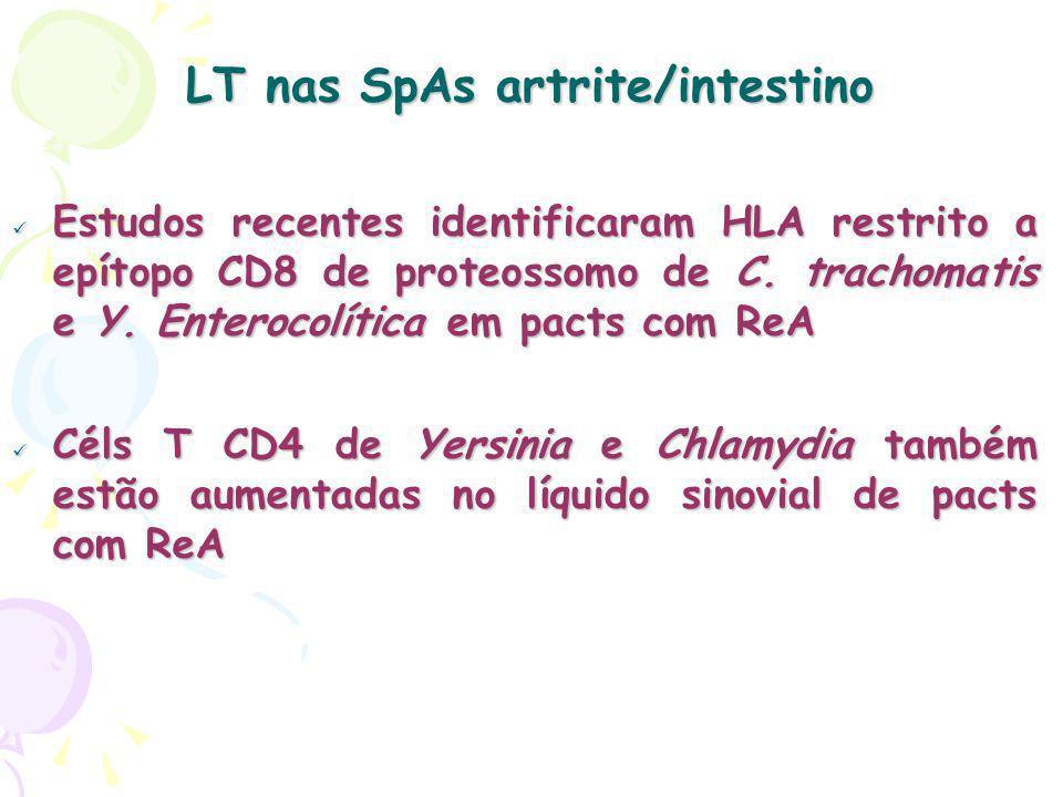 LT nas SpAs artrite/intestino Estudos recentes identificaram HLA restrito a epítopo CD8 de proteossomo de C. trachomatis e Y. Enterocolítica em pacts