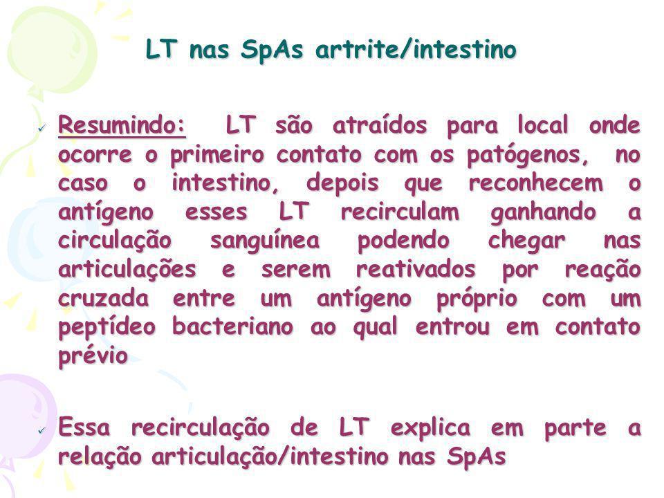 LT nas SpAs artrite/intestino Resumindo: LT são atraídos para local onde ocorre o primeiro contato com os patógenos, no caso o intestino, depois que reconhecem o antígeno esses LT recirculam ganhando a circulação sanguínea podendo chegar nas articulações e serem reativados por reação cruzada entre um antígeno próprio com um peptídeo bacteriano ao qual entrou em contato prévio Resumindo: LT são atraídos para local onde ocorre o primeiro contato com os patógenos, no caso o intestino, depois que reconhecem o antígeno esses LT recirculam ganhando a circulação sanguínea podendo chegar nas articulações e serem reativados por reação cruzada entre um antígeno próprio com um peptídeo bacteriano ao qual entrou em contato prévio Essa recirculação de LT explica em parte a relação articulação/intestino nas SpAs Essa recirculação de LT explica em parte a relação articulação/intestino nas SpAs