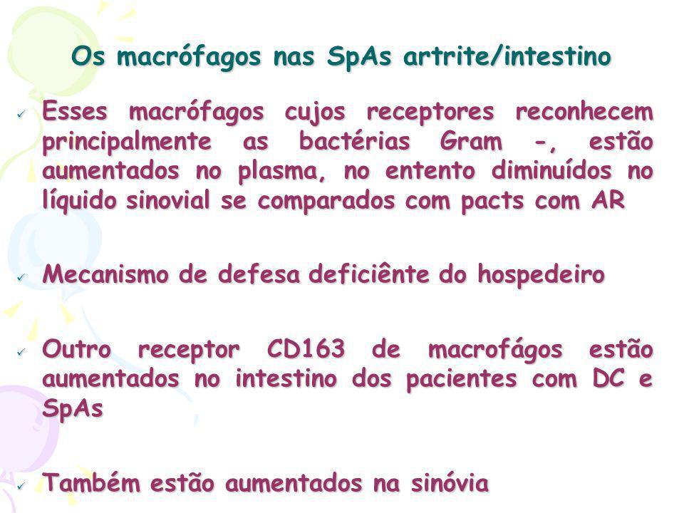 Os macrófagos nas SpAs artrite/intestino Esses macrófagos cujos receptores reconhecem principalmente as bactérias Gram -, estão aumentados no plasma, no entento diminuídos no líquido sinovial se comparados com pacts com AR Esses macrófagos cujos receptores reconhecem principalmente as bactérias Gram -, estão aumentados no plasma, no entento diminuídos no líquido sinovial se comparados com pacts com AR Mecanismo de defesa deficiênte do hospedeiro Mecanismo de defesa deficiênte do hospedeiro Outro receptor CD163 de macrofágos estão aumentados no intestino dos pacientes com DC e SpAs Outro receptor CD163 de macrofágos estão aumentados no intestino dos pacientes com DC e SpAs Também estão aumentados na sinóvia Também estão aumentados na sinóvia