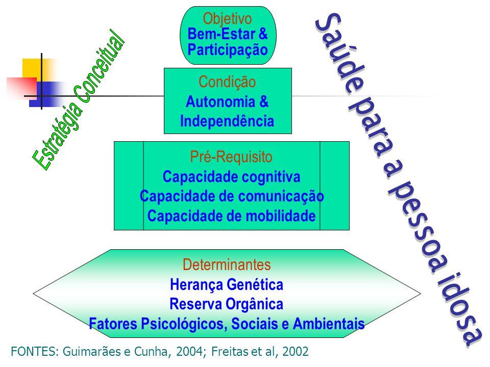 Objetivo Bem-Estar & Participação Condição Autonomia & Independência Pré-Requisito Capacidade cognitiva Capacidade de comunicação Capacidade de mobili