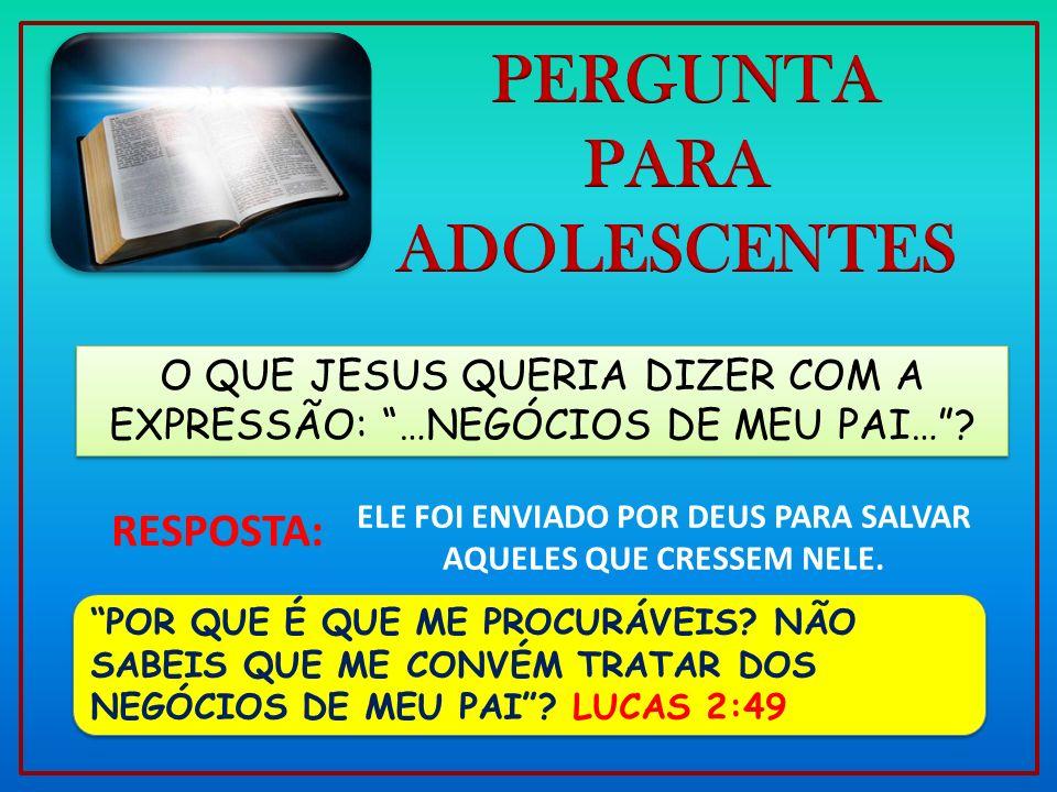O QUE JESUS QUERIA DIZER COM A EXPRESSÃO: …NEGÓCIOS DE MEU PAI…? POR QUE É QUE ME PROCURÁVEIS? NÃO SABEIS QUE ME CONVÉM TRATAR DOS NEGÓCIOS DE MEU PAI