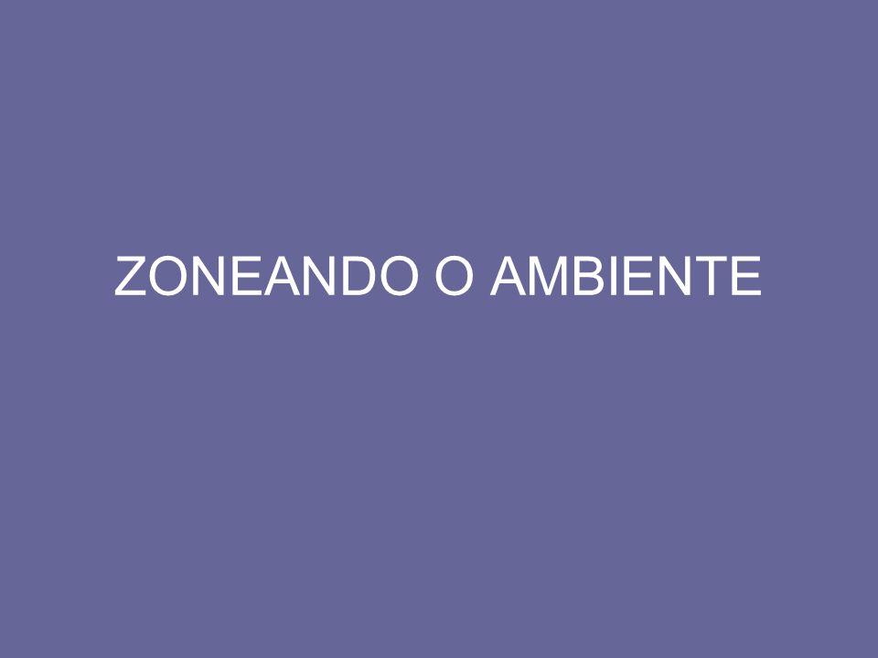 ZONEANDO O AMBIENTE