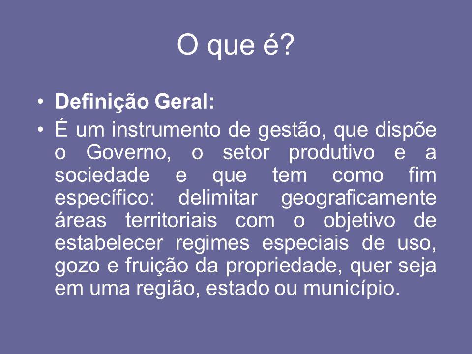 O que é? Definição Geral: É um instrumento de gestão, que dispõe o Governo, o setor produtivo e a sociedade e que tem como fim específico: delimitar g
