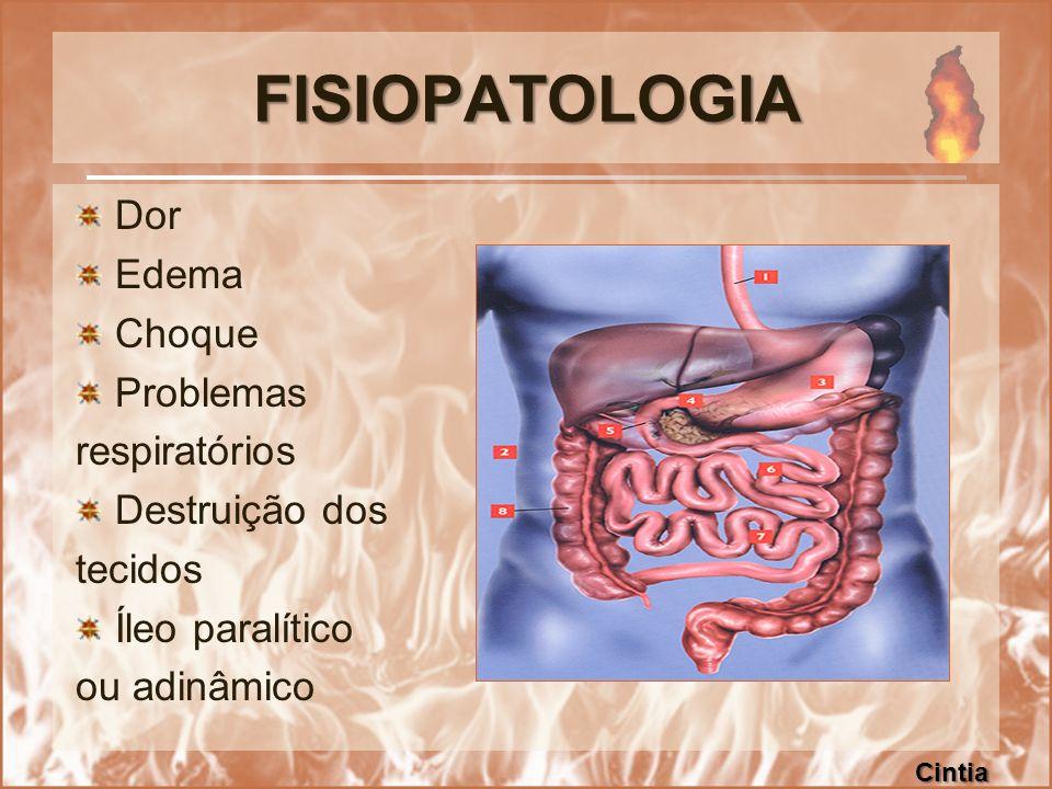FISIOPATOLOGIA Dor Edema Choque Problemas respiratórios Destruição dos tecidos Íleo paralítico ou adinâmico Cintia