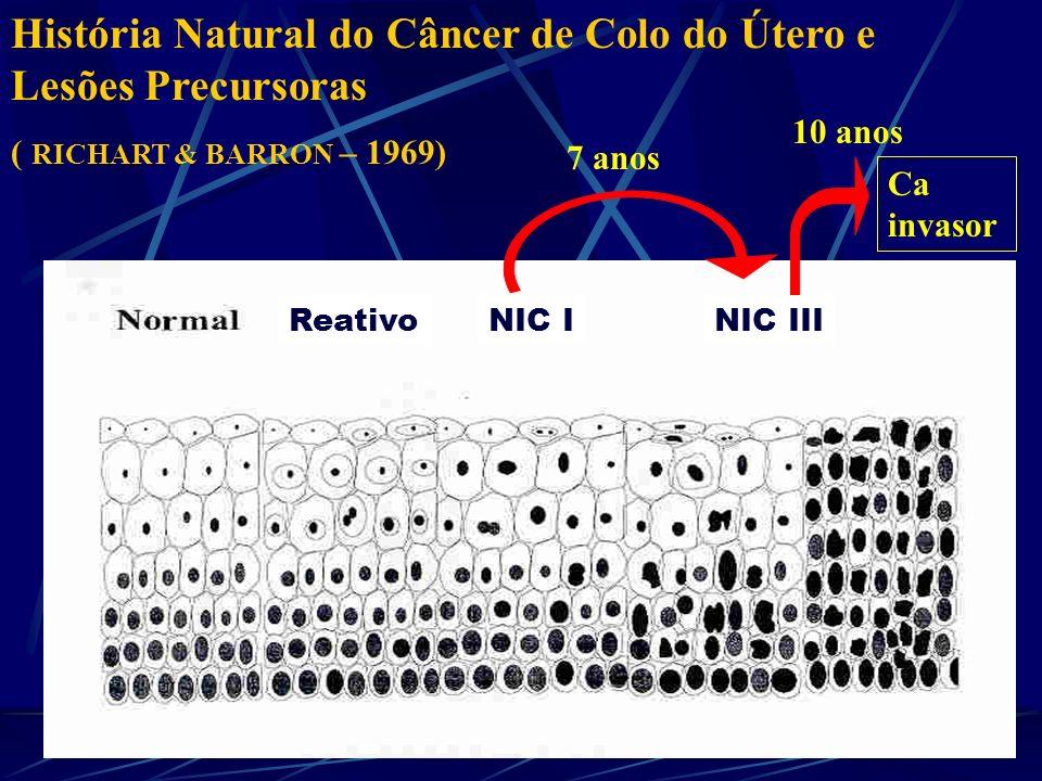 História Natural do Câncer de Colo do Útero e Lesões Precursoras ( RICHART & BARRON – 1969) 7 anos 10 anos Ca invasor ReativoNIC INIC III