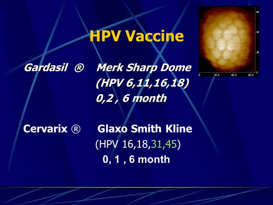 HPV Vaccine Gardasil ® Merk Sharp Dome (HPV 6,11,16,18) (HPV 6,11,16,18) 0,2, 6 month 0,2, 6 month Cervarix ® Glaxo Smith Kline (HPV 16,18,31,45) 0, 1