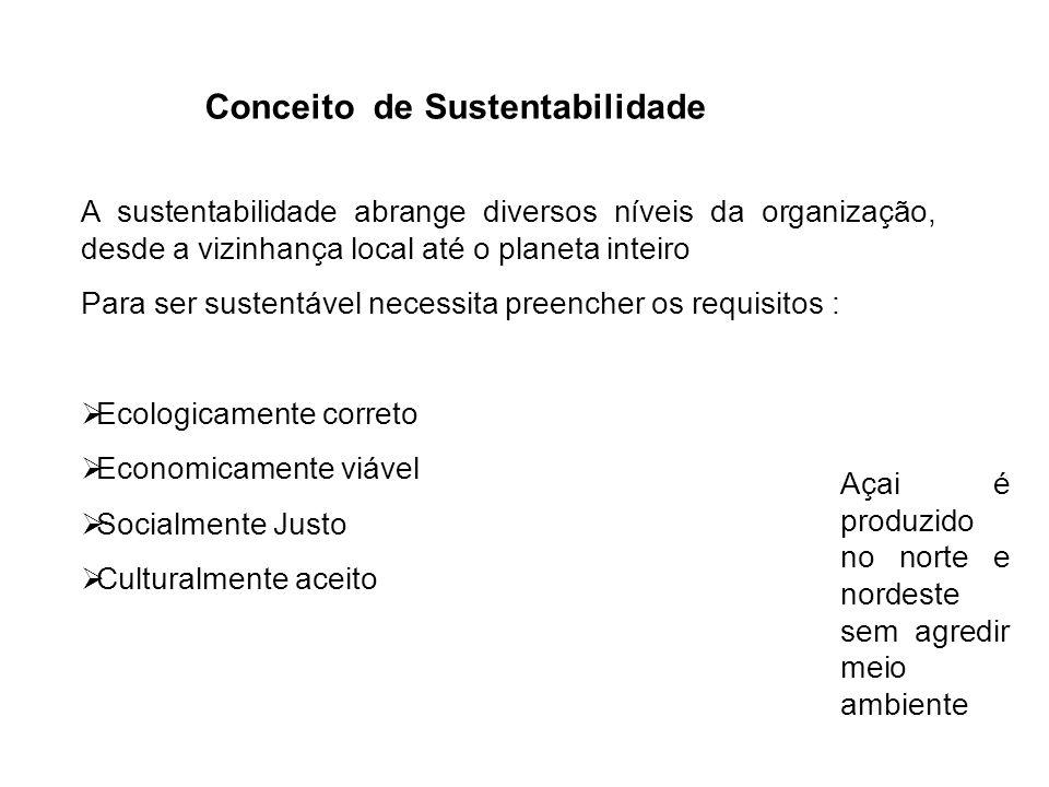 Conceito de Sustentabilidade A sustentabilidade abrange diversos níveis da organização, desde a vizinhança local até o planeta inteiro Para ser susten