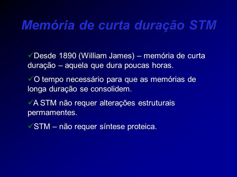 Memória de curta duração STM Desde 1890 (William James) – memória de curta duração – aquela que dura poucas horas. O tempo necessário para que as memó