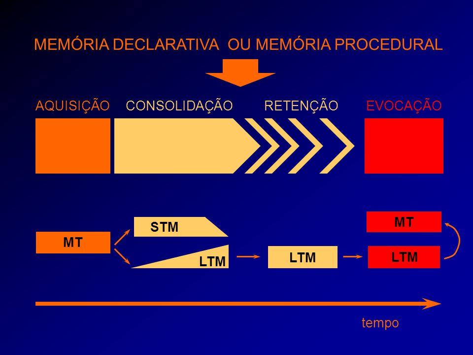 tempo AQUISIÇÃO MT CONSOLIDAÇÃO LTM STM RETENÇÃO LTM MEMÓRIA DECLARATIVA OU MEMÓRIA PROCEDURAL EVOCAÇÃO LTM MT