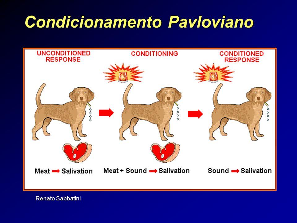Renato Sabbatini Condicionamento Pavloviano