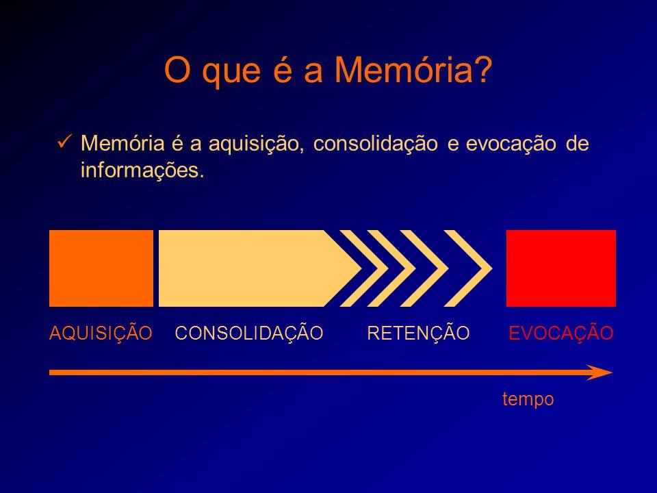 O que é a Memória? Memória é a aquisição, consolidação e evocação de informações. AQUISIÇÃOCONSOLIDAÇÃOEVOCAÇÃORETENÇÃO tempo
