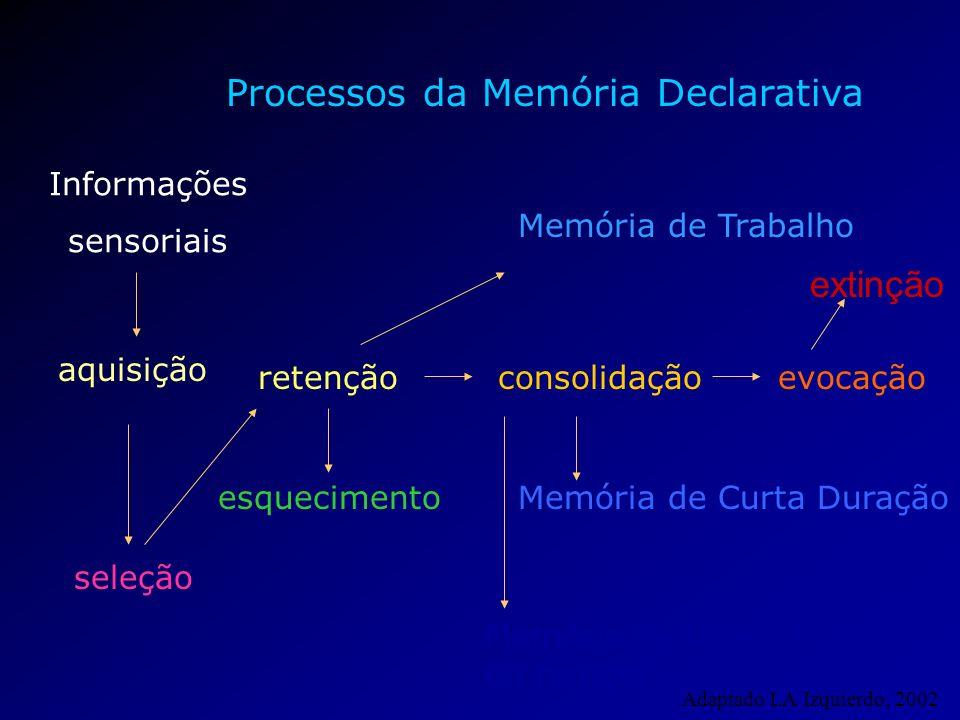 Processos da Memória Declarativa esquecimento aquisição retençãoevocação seleção consolidação Informações sensoriais Memória de Curta Duração Memória