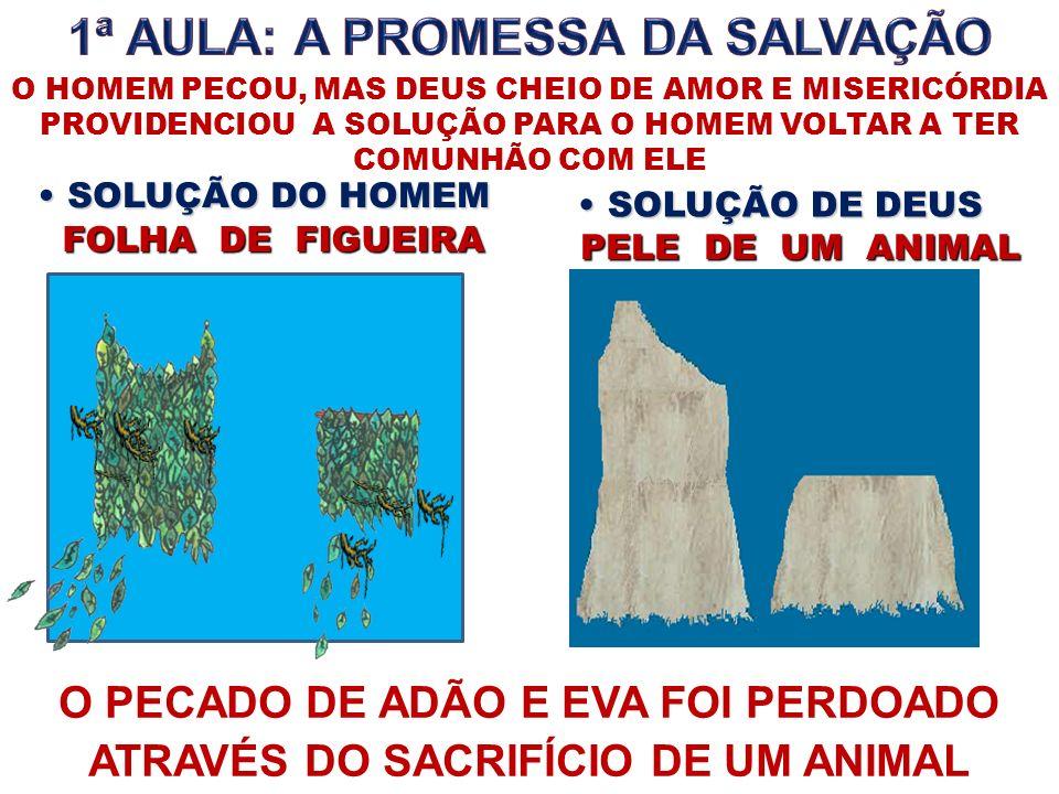 SOLUÇÃO DO HOMEM SOLUÇÃO DO HOMEM SOLUÇÃO DE DEUS SOLUÇÃO DE DEUS FOLHA DE FIGUEIRA FOLHA DE FIGUEIRA PELE DE UM ANIMAL PELE DE UM ANIMAL O PECADO DE