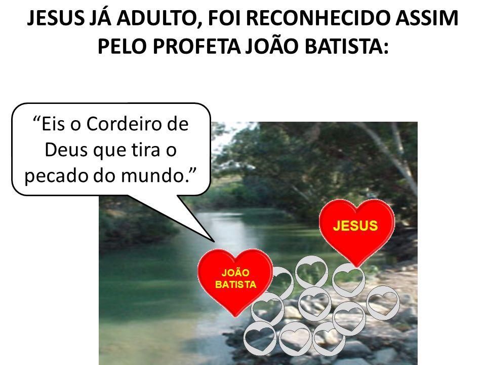 JESUS JÁ ADULTO, FOI RECONHECIDO ASSIM PELO PROFETA JOÃO BATISTA: JESUS Eis o Cordeiro de Deus que tira o pecado do mundo. JOÃO BATISTA