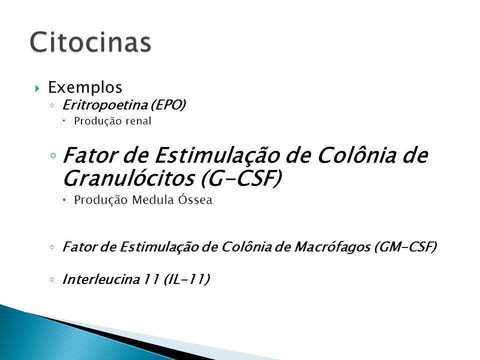 Exemplos Eritropoetina (EPO) Produção renal Fator de Estimulação de Colônia de Granulócitos (G-CSF) Produção Medula Óssea Fator de Estimulação de Colô