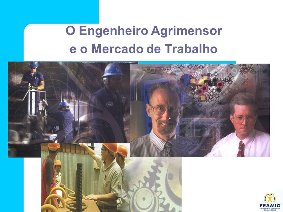 O Engenheiro Agrimensor e o Mercado de Trabalho