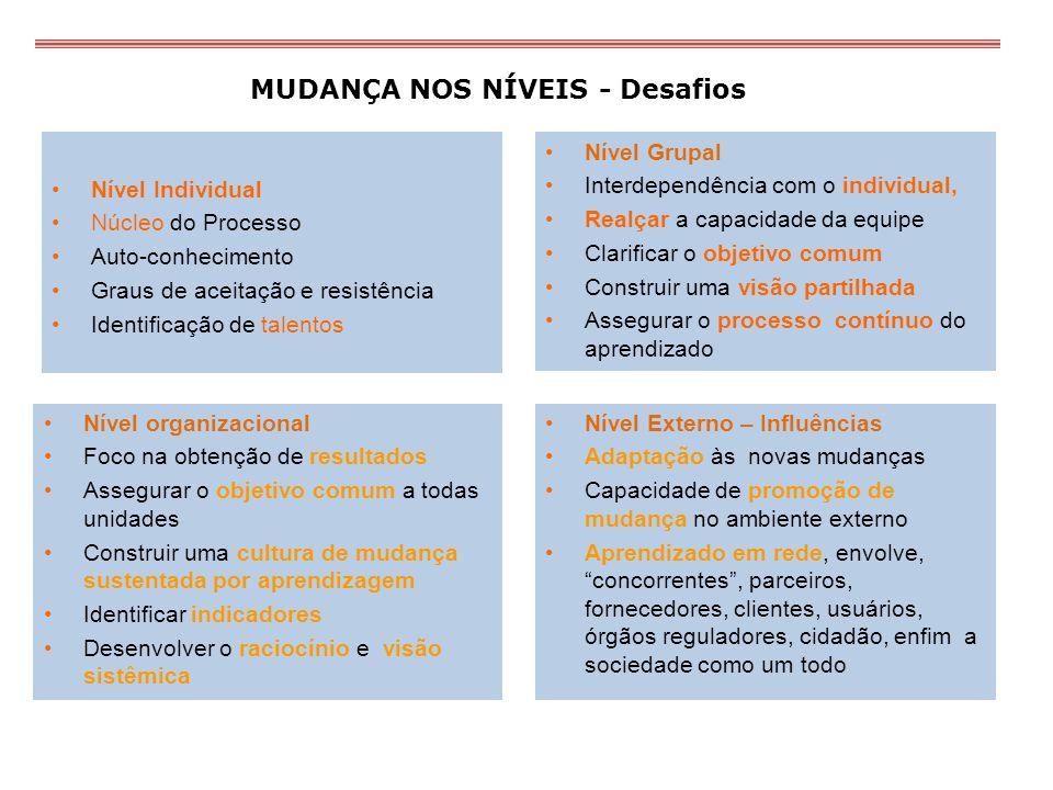 MUDANÇA NOS NÍVEIS - Desafios Nível Individual Núcleo do Processo Auto-conhecimento Graus de aceitação e resistência Identificação de talentos Nível G
