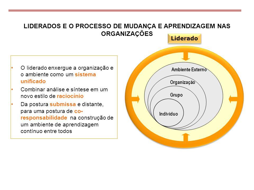 LIDERADOS E O PROCESSO DE MUDANÇA E APRENDIZAGEM NAS ORGANIZAÇÕES Ambiente Externo Organização Grupo Indivíduo O liderado enxergue a organização e o a
