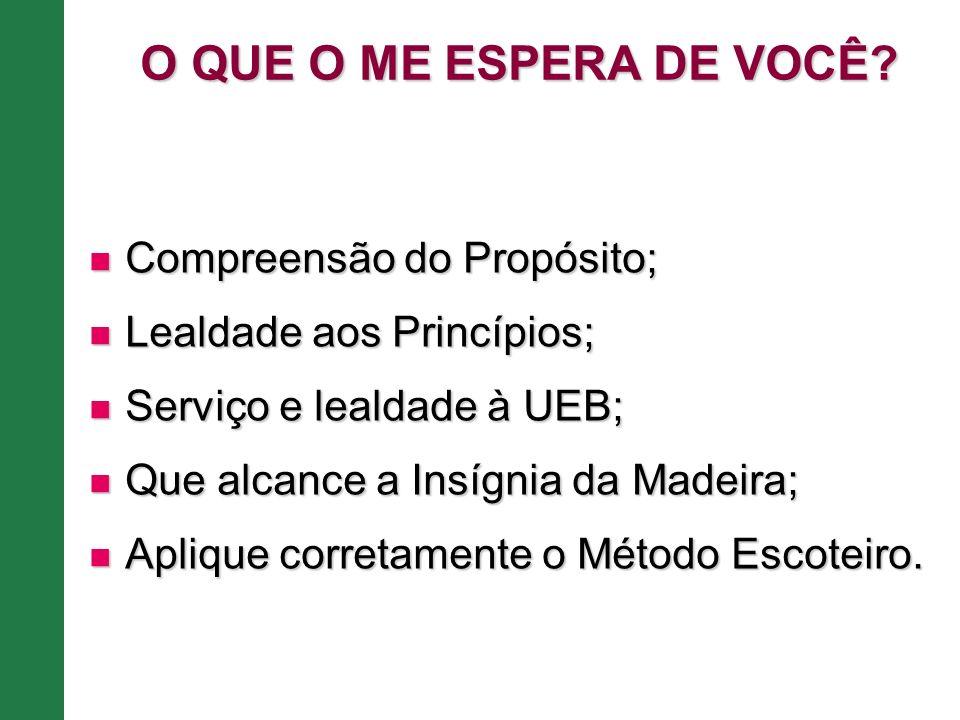 Compreensão do Propósito; Compreensão do Propósito; Lealdade aos Princípios; Lealdade aos Princípios; Serviço e lealdade à UEB; Serviço e lealdade à U
