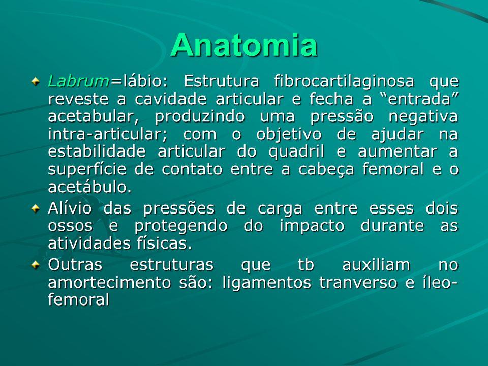 Anatomia Labrum=lábio: Estrutura fibrocartilaginosa que reveste a cavidade articular e fecha a entrada acetabular, produzindo uma pressão negativa int