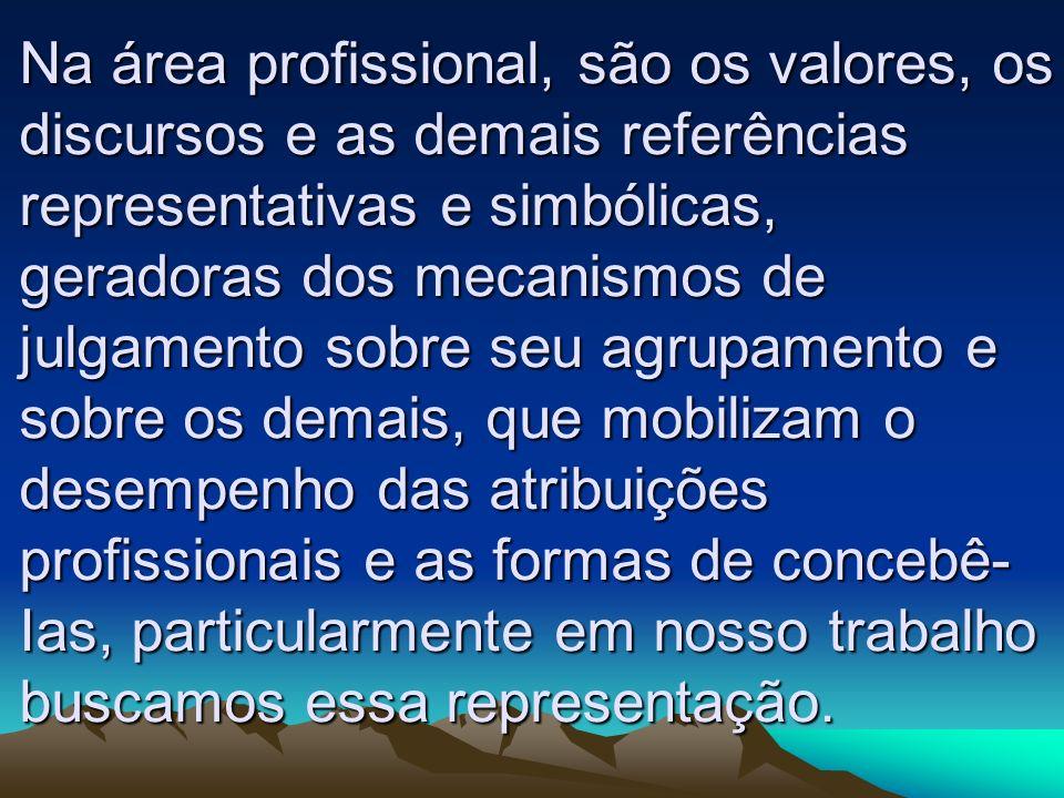 Na área profissional, são os valores, os discursos e as demais referências representativas e simbólicas, geradoras dos mecanismos de julgamento sobre