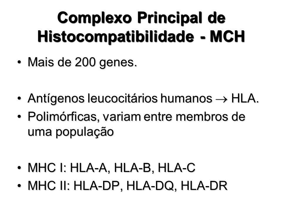 Complexo Principal de Histocompatibilidade - MCH Mais de 200 genes.Mais de 200 genes. Antígenos leucocitários humanos HLA.Antígenos leucocitários huma